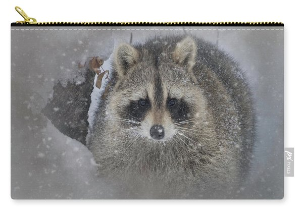 Snowy Raccoon Carry-all Pouch