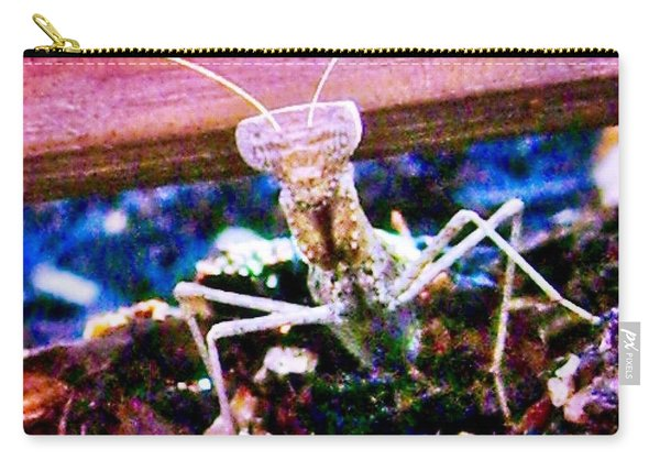 Sonoran Desert Ground Mantis Carry-all Pouch