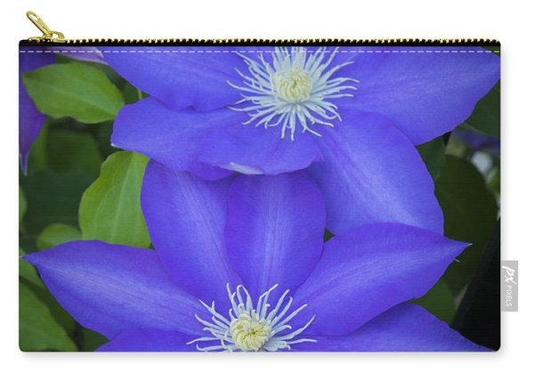 South Carolina Color Carry-all Pouch