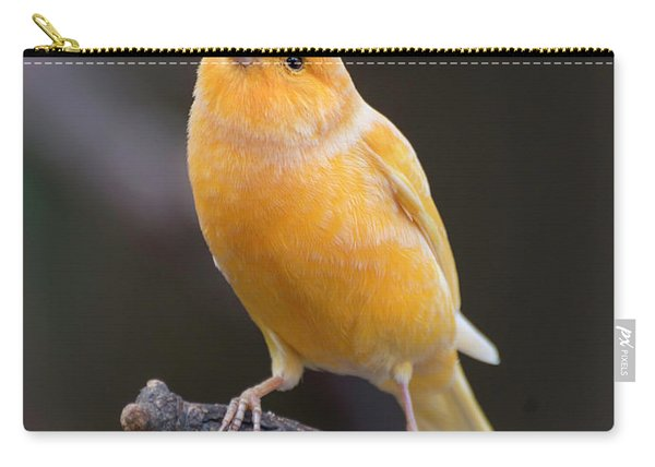 Spanish Timbrado Canary Carry-all Pouch