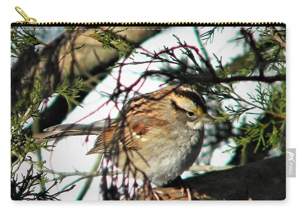 Sparrow In The Snow Carry-all Pouch