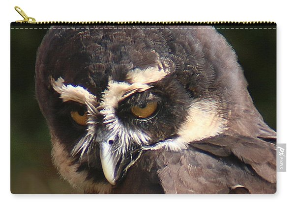 Carry-all Pouch featuring the photograph Spectacled Owl Portrait 2 by William Selander