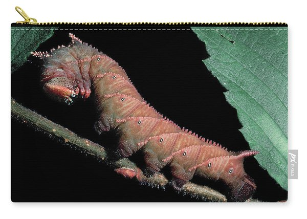 Sphinx Moth Caterpillar Carry-all Pouch
