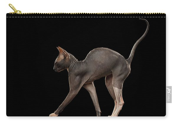 Sphynx Cat Funny Standing Isolated On Black Mirror Carry-all Pouch