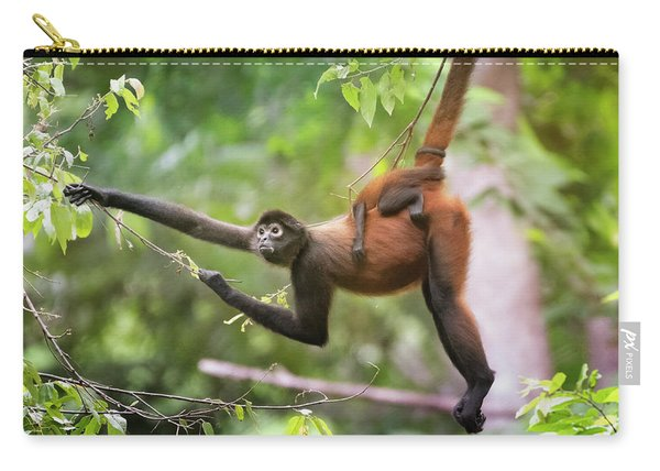 Spider Monkey And Infant Costa Rica Carry-all Pouch