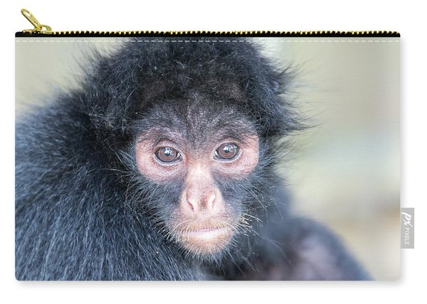 Spider Monkey Face Carry-all Pouch