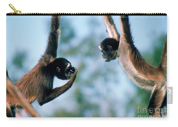 Spider Monkeys Ateles Sp. Playing Carry-all Pouch