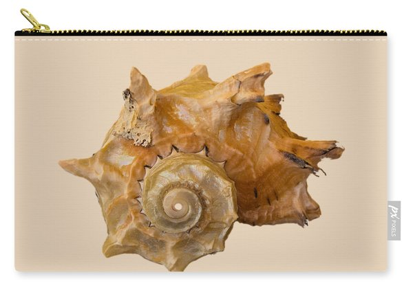 Spiral Shell Transparency Carry-all Pouch