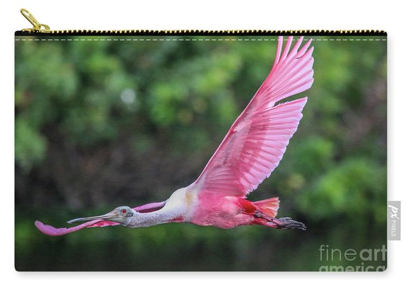 Carry-all Pouch featuring the photograph Spoony In Flight by Tom Claud