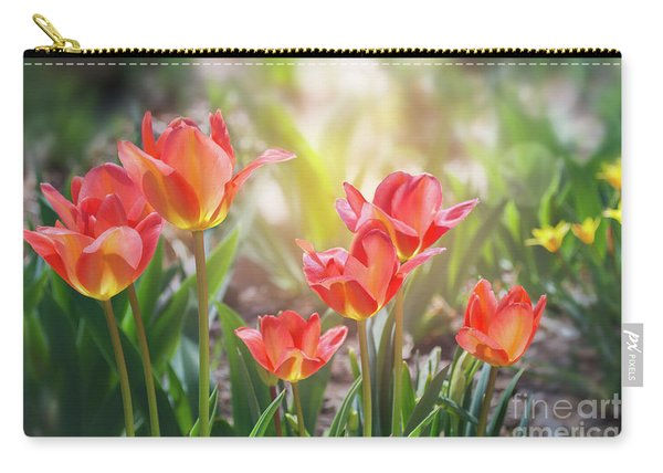 Carry-all Pouch featuring the photograph Spring Favorites by Susan Warren