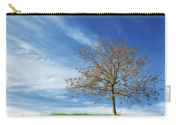 Spring Landscapes Carry-all Pouch