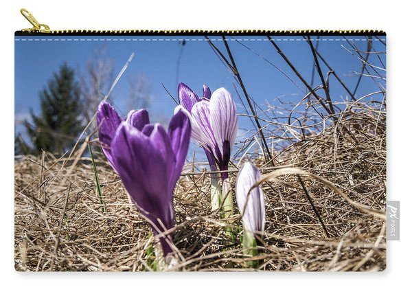 Spring On Bule Carry-all Pouch