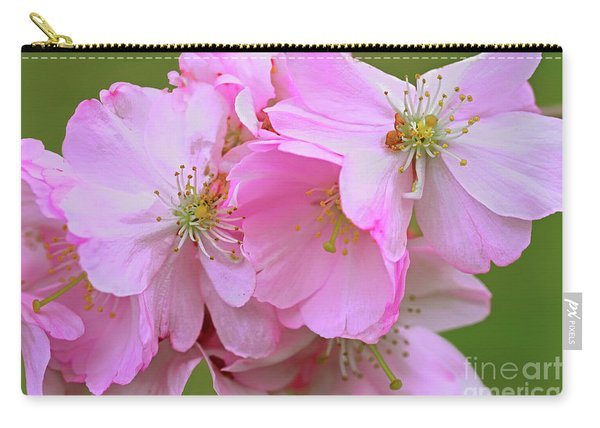 Springing Free Carry-all Pouch