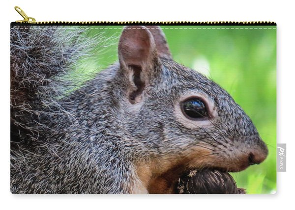 Squirrel 1 Carry-all Pouch