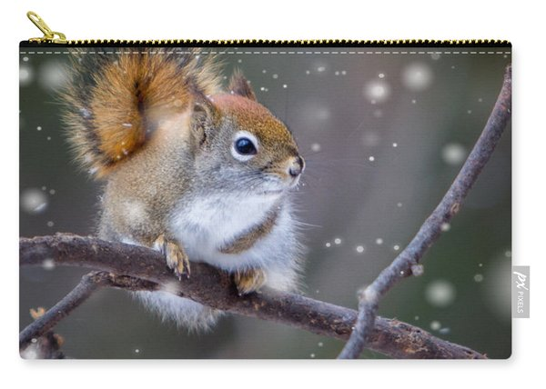Squirrel Balancing Act Carry-all Pouch