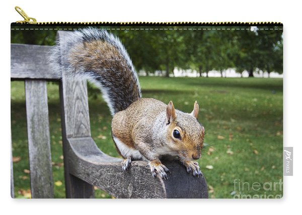 Squirrel Bench Carry-all Pouch