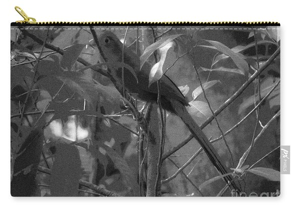 Squirrel Cuckoo  Carry-all Pouch