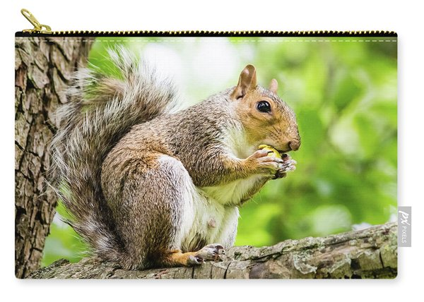 Squirrel Eating On A Branch Carry-all Pouch