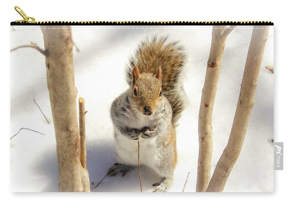 Squirrel In Snow Carry-all Pouch