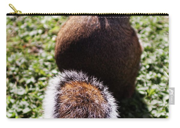 Squirrel S Back Carry-all Pouch