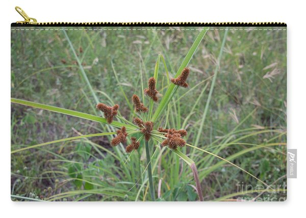 Starburst Of Nature Carry-all Pouch
