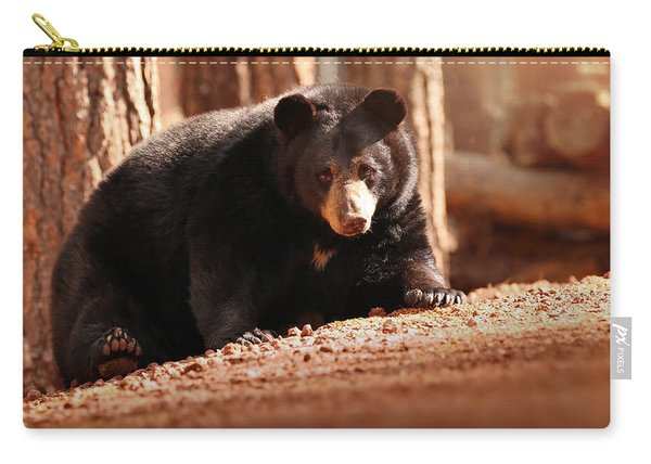 Staredown Carry-all Pouch