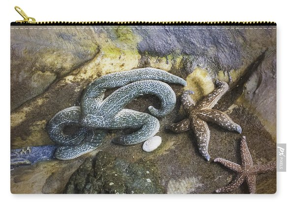 Starfish Trio Carry-all Pouch