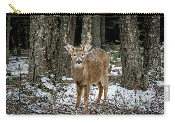 Staring Buck Carry-all Pouch