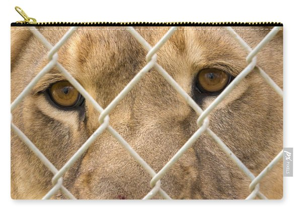 Staring Lioness Carry-all Pouch
