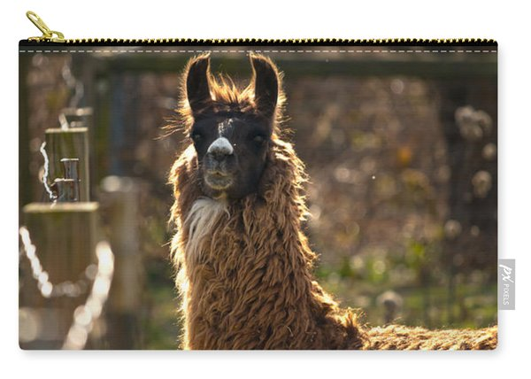 Staring Llama Carry-all Pouch