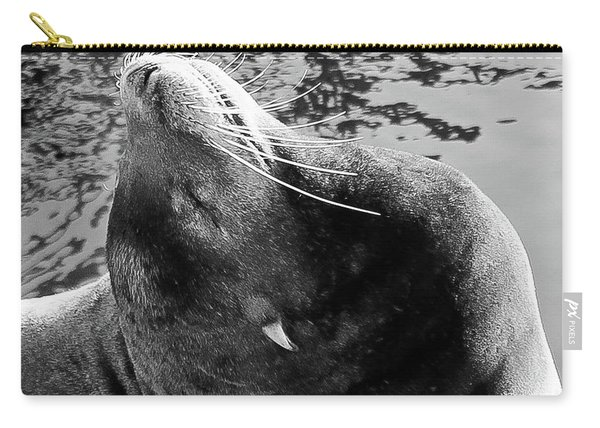 Stretch, Black And White Carry-all Pouch