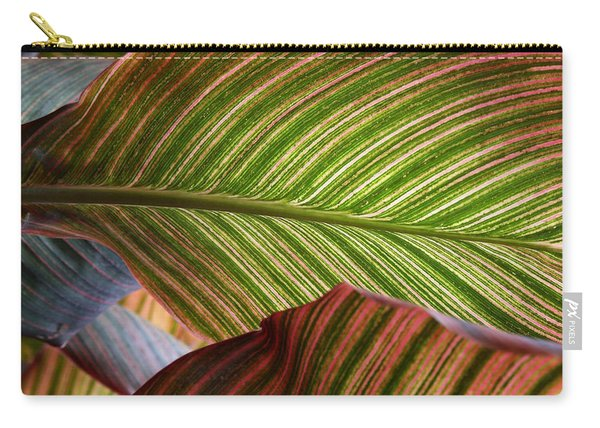 Striped Canna Lily Leaves Carry-all Pouch