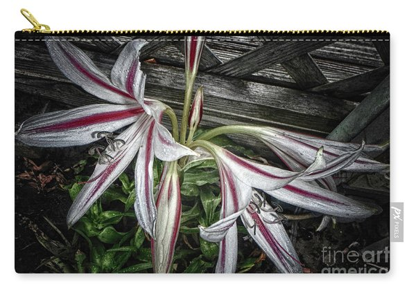 Striped Lilies Carry-all Pouch