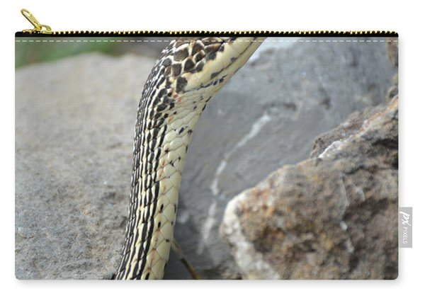 Striped Whipsnake, Masticophis Taeniatus Carry-all Pouch