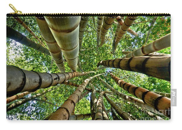 Stunning Bamboo Forest - Color Carry-all Pouch