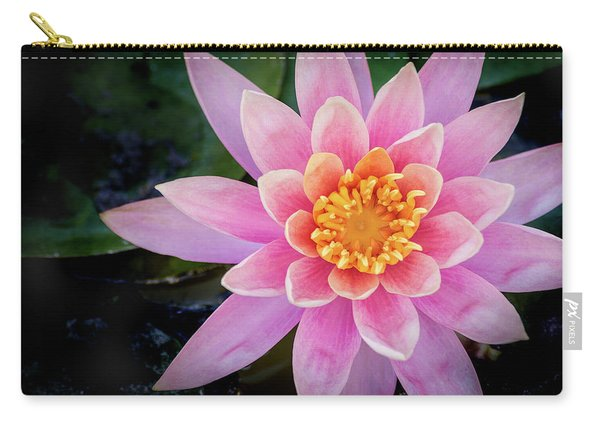 Stunning Water Lily Carry-all Pouch
