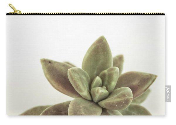 Succulents Flowers Colour Carry-all Pouch