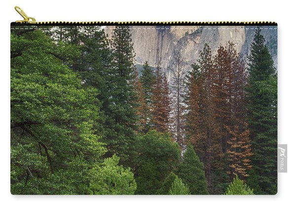 Summer Half Dome  Carry-all Pouch