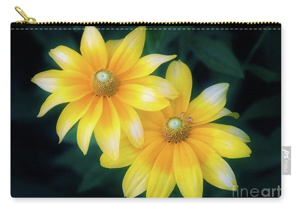 Sun Sisters Carry-all Pouch