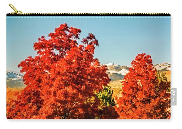 Sun Snow And Color Carry-all Pouch