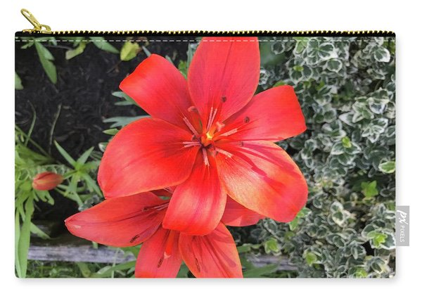Sunbeam On Red Day Lily Carry-all Pouch