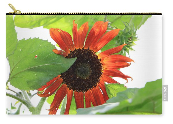 Sunflower In The Afternoon Carry-all Pouch