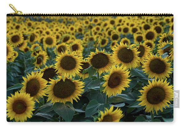 Sunflowers V Carry-all Pouch