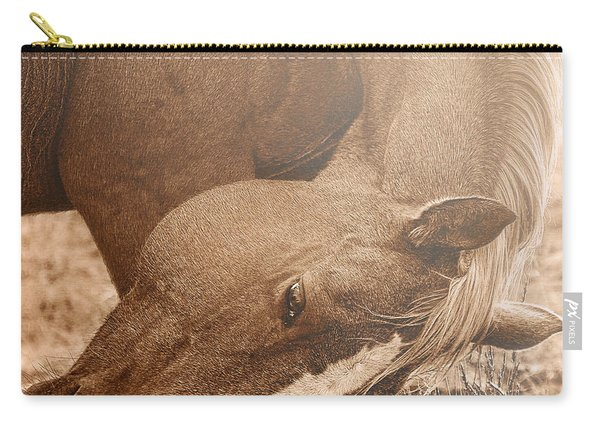 Sunlight And Grace Carry-all Pouch
