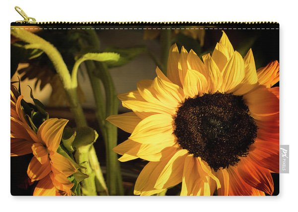Carry-all Pouch featuring the photograph Sunny An Dark by Michael Hope