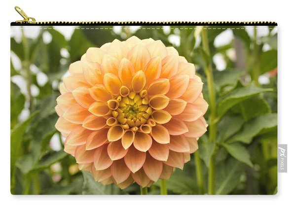 Sunny Dahlia Carry-all Pouch