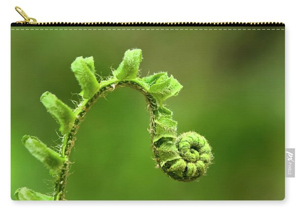 Sunrise Spiral Fern Carry-all Pouch