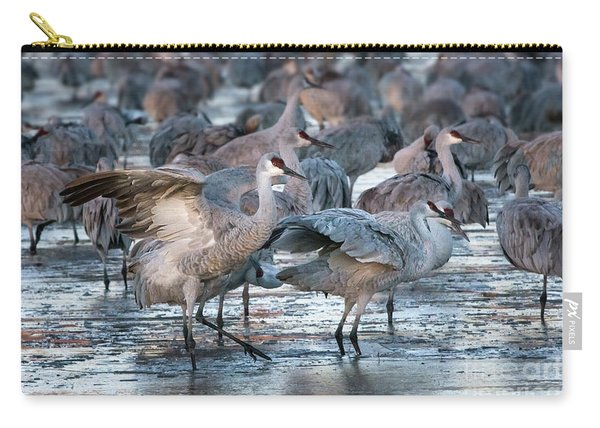Carry-all Pouch featuring the photograph Sunrise Stretch by Susan Warren