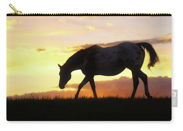 Sunset Appy Carry-all Pouch