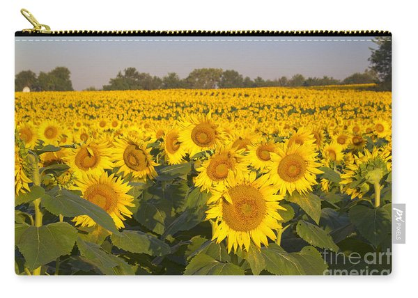 Sunshine Flower Field Carry-all Pouch